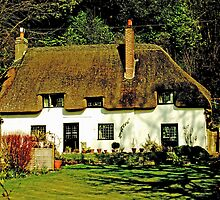 Abbey Cottage by Catherine Hamilton-Veal  ©