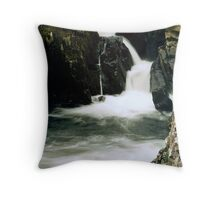 Point of Seduction  Throw Pillow