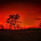 Another Sunset by capizzi