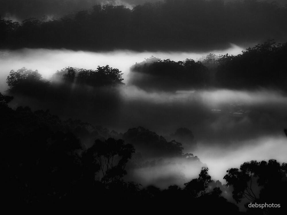 """""""Midnight Mist"""" by debsphotos"""