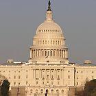 The Capitol at Sunset by Megan Evorik