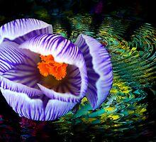 Gift of Spring by LudaNayvelt