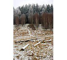 Land Photographic Print