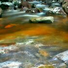 Stream at Mt Stong by adng
