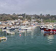Misty Lyme Regis Harbour by Susie Peek