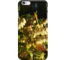 HIGH BUSH BLUEBERRY iPhone Case/Skin