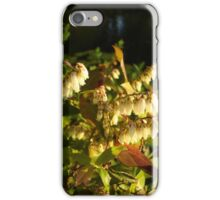 HIGH BUSH BLUEBERRY iPhone Case/Skin