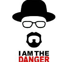 Breaking Bad- I am the danger by Morgan Green