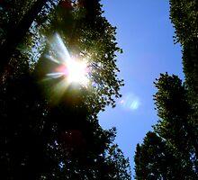 YOSEMITE SUNRISE by gracestout2007