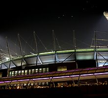 the Mighty MCG by Lisa  Kenny