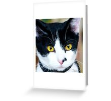 What Sofia Sees Greeting Card