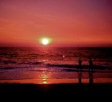 purple love by eliamazor