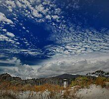 Observation Tower, West Coast by Peter Kurdulija