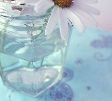 Daisies in a glass jar by AlisonBurford
