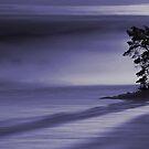blue creation.. by roy skogvold