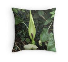 Cuckoo Pint or Lords & Ladies. Surrey Hedgerow in April. Throw Pillow