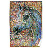 Colorful Horse Corcel Poster