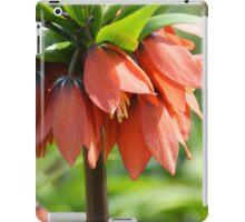 Orange Crown imperial iPad Case/Skin
