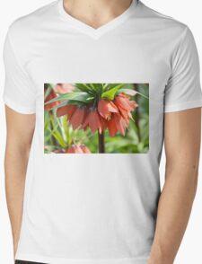 Orange Crown imperial Mens V-Neck T-Shirt