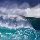 Bodyboarder At Banzai Pipeline 2011.5 by Alex Preiss