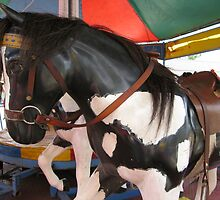 Carousel Black and White horse by Marilyn Baldey