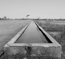 Water Trough B&W by Matthew Reid