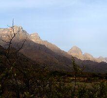 Cederberg Mountains setting sun by hannibalannie