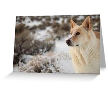 Dude Dog Greeting Card