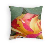 Woolmer's National Rose Garden  (Longford) Tasmania Throw Pillow