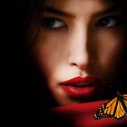 Butterfly and The World of the Soul by Ann  Warrenton