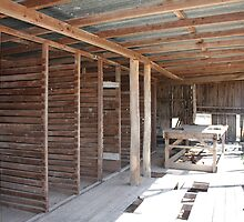 Inside The Old Shearing Shed by tazsnaps