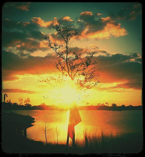 Sunset - Diana F+ by KadesRave67