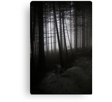 Anybody there? Canvas Print