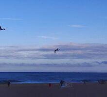 Seaside  by vigor