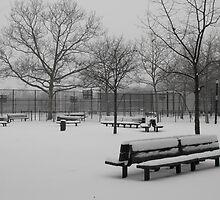 Snowy Bench on a Snow Day, Brooklyn, NY by EMElman