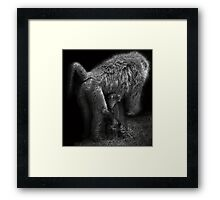 Watching Me, Watching You Framed Print