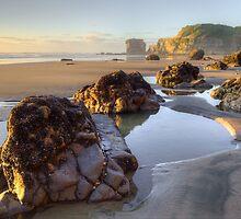 Maori Bay  by earlcooknz