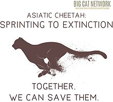 Asiatic Cheetah: Sprinting to Extinction by bigcatnetwork