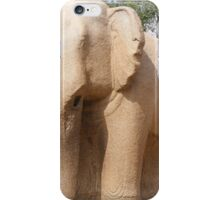 Elephant , the five rathas iPhone Case/Skin