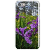 Wild Iris and Buttercups iPhone Case/Skin