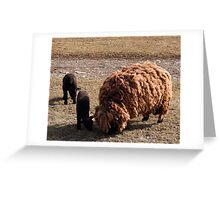 Mom & babies Greeting Card