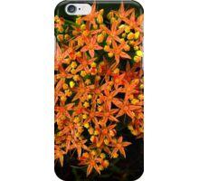 Salmon Surprise iPhone Case/Skin