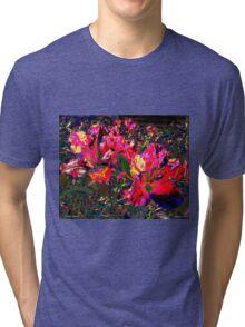 Color Climax Tri-blend T-Shirt