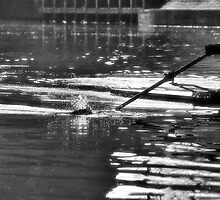 In the ripples of Ratty by clickinhistory