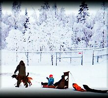 Christmas Day And a Two Dog Open Sleigh (umm..Sled!) by copperhead