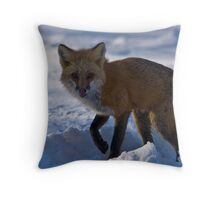 Cold Morning For Momma Fox Throw Pillow