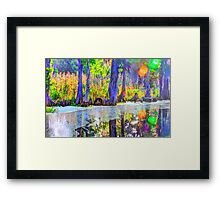 Blued Bayou Framed Print