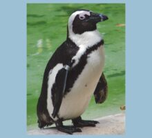African Penguin Kids Clothes