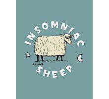 Insomniac Sheep Photographic Print