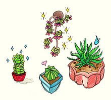 sassy succulents by HiddenStash